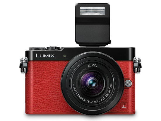 -LUMIX-DMC-GM5 4